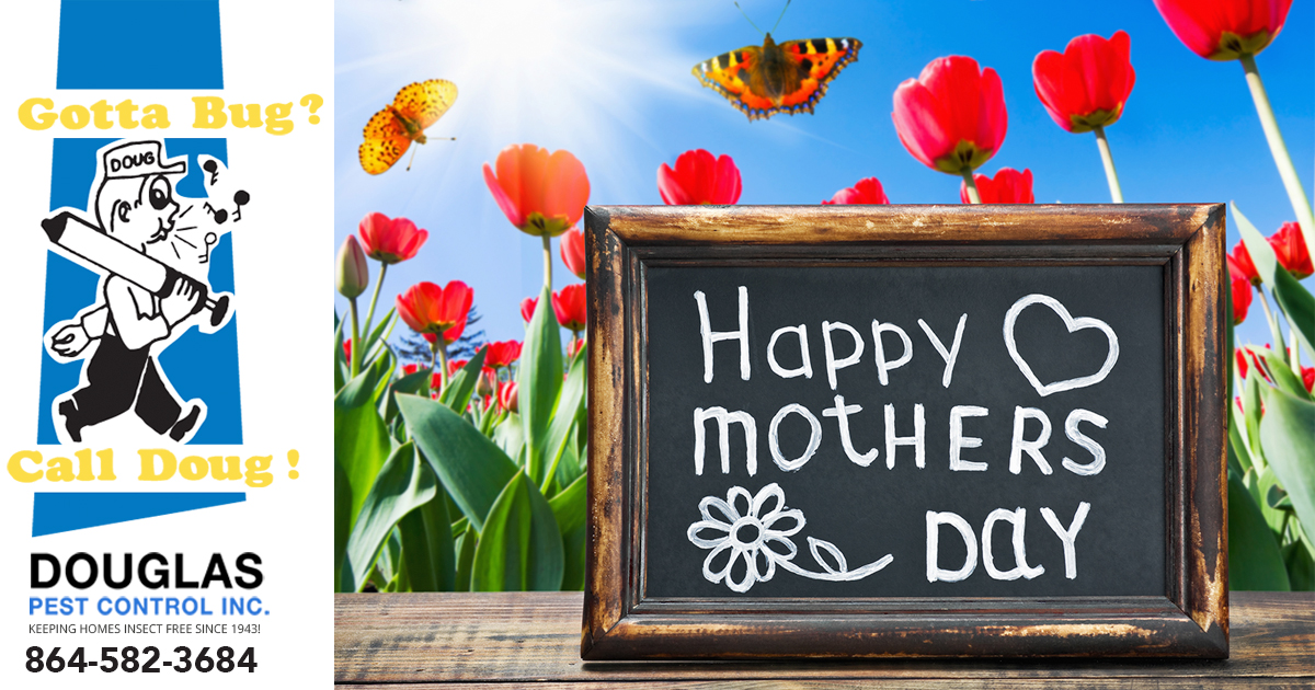 Eight Ways To Make Mom Feel Extra Special This Mother's Day
