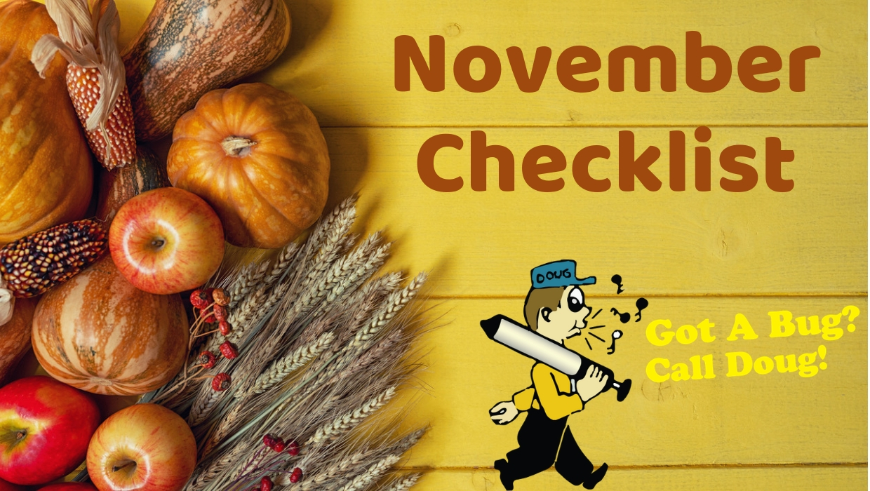 November Home Checklist!