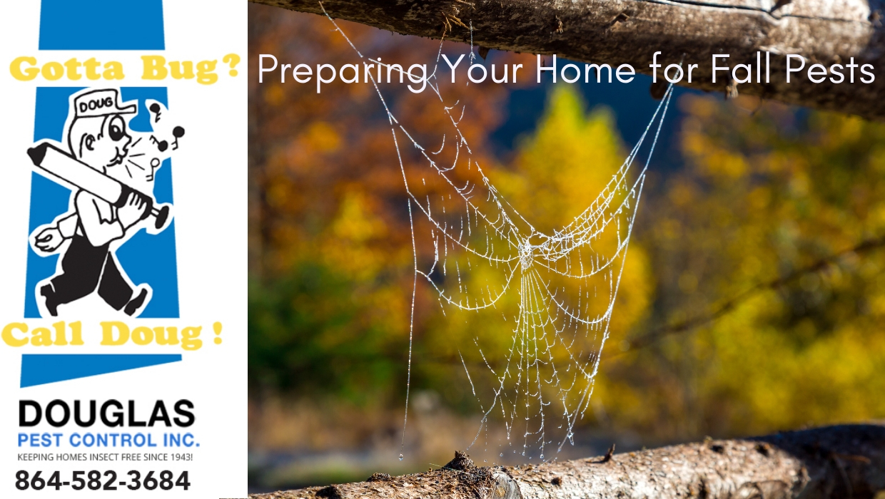 Preparing Your Home For Fall Pests