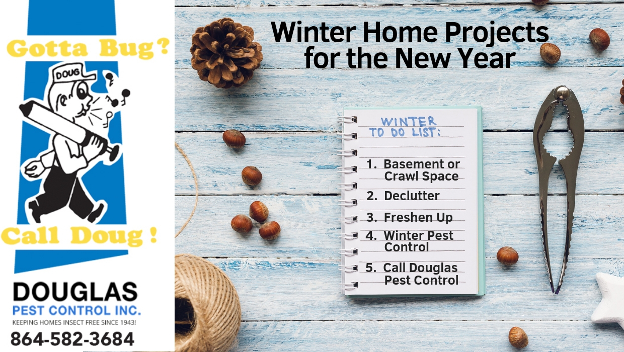 Winter Home Projects for the New Year